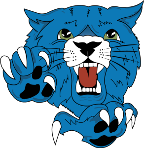 wildcat-3