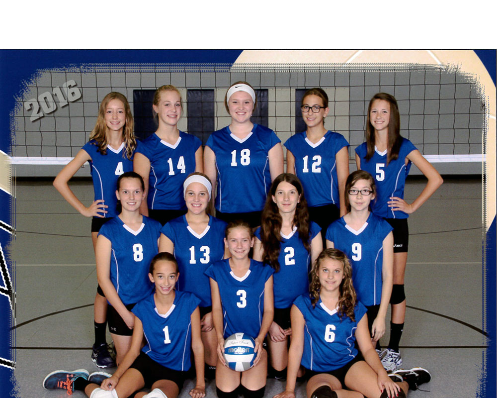 varsity-volleyball1